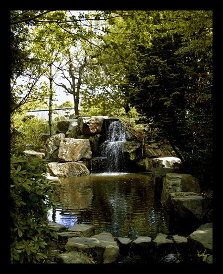 Cascade Au Jardin Japonais De Nantes Photo Loire Atlantique