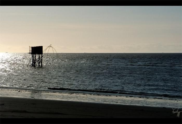 http://la-rose-noir.chez-alice.fr/BlogPhotoLoireAtlantique/Et-au-loin-la-liberte_saint_brevin_les_pins_plage_carelet_pecherie_mer_ocean.jpg