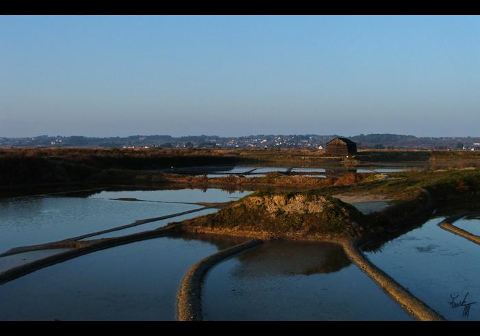 http://la-rose-noir.chez-alice.fr/BlogPhotoLoireAtlantique/La-maison-du-paludier_guerande_marais_salants_fauve_photo_loire-atlantique_fin_hiver.jpg