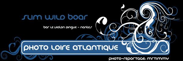http://la-rose-noir.chez-alice.fr/BlogPhotoLoireAtlantique/concert_le_violon_dingue_nantes_slim_wild_boar/ban_le_violon_dingue_reportage_photo.jpg