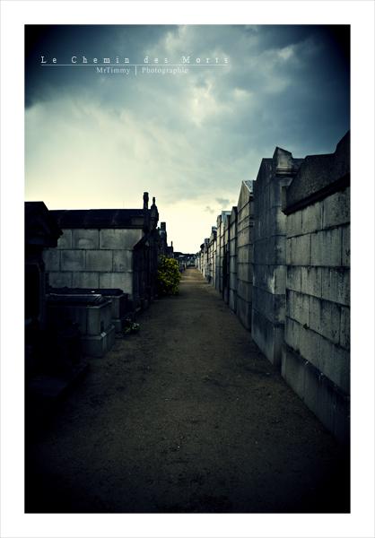 http://la-rose-noir.chez-alice.fr/BlogPhotoLoireAtlantique/le_chemin_des_morts_cimetierre_nantes_tombe_caveaux_chemin_morbide_mortuaire_prossession_mrtimmy_photographie_Cimetiere_Misericorde.jpg