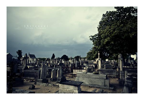 http://la-rose-noir.chez-alice.fr/BlogPhotoLoireAtlantique/silence_cimetierre_nantes_tombe_caveaux_chemin_morbide_mortuaire_prossession_mrtimmy_photographie__Cimetiere_Misericorde.jpg
