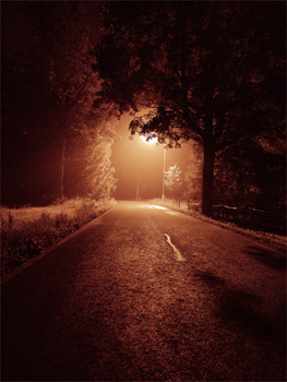 http://la-rose-noir.chez-alice.fr/BlogRoseNoire/une_nuit_Night_road_by_F3rd4 fond.jpg